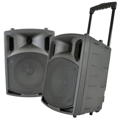 Portable MP3 / PA System with 2 Wireless Microphones